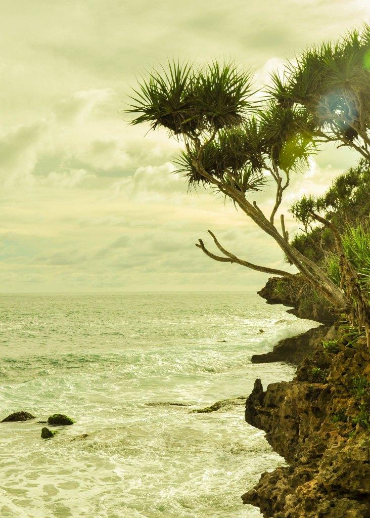 Pulau Timang-3-1